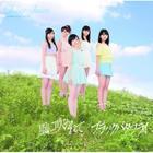 Black Butterfly / Kaze ni Fukarete [Type D](SINGLE+DVD) (First Press Limited Edition)(Japan Version)