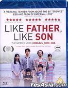 Like Father, Like Son (2013) (Blu-ray) (UK Version)