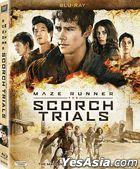 Maze Runner: The Scorch Trials (2015) (Blu-ray) (Hong Kong Version)