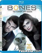 Bones (Blu-ray) (Ep. 1-23) (The Complete Sixth Season) (US Version)