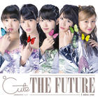 I miss you/The Future [Type D](SINGLE+DVD) (First Press Limited Edition)(Japan Version)
