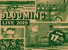 A3! BLOOMING LIVE 2019 Kobe Kouen [DVD] (Japan Version)
