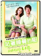 Standing Sleeping Tree (2010) (DVD) (Taiwan Version)