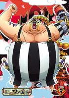ONE PIECE 20TH SEASON WANOKUNI HEN PIECE 9 (DVD)(Japan Version)