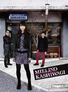 Mielino Kashiwagi Blu-ray Box  (Blu-ray)(Japan Version)