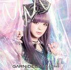 BLAZING (SINGLE+DVD) (First Press Limited Edition)(Japan Version)