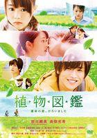 Evergreen Love (DVD) (Normal Edition) (Japan Version)