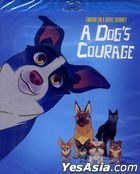 A Dog's Courage (Blu-ray) (US Version)
