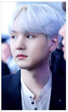 BTS : Suga Style - Photurn Single Earring