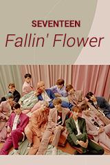 Seventeen - Fallin' Flower